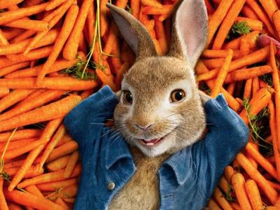 Peter Rabbit Games